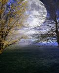 Premade Background FGM 227 by FairieGoodMother