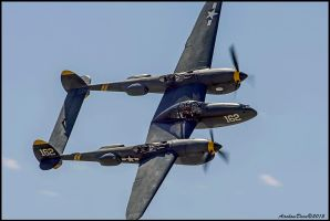P-38 Lightning Planes of Fame 2015 by AirshowDave