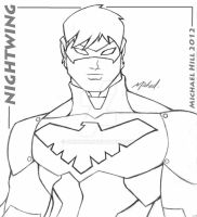YOUNG JUSTICE NIGHTWING by icemaxx1