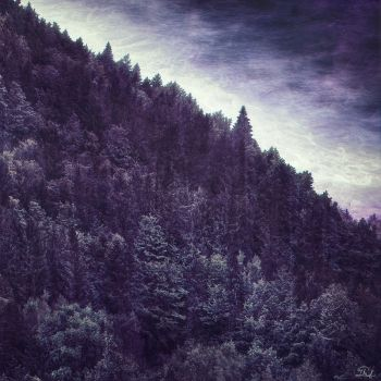 Matte Painting inspired by Ulver's Bergtatt Cover by mcrassusart