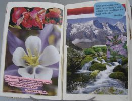 1st Altered Book 21, Favorites by angelstar22