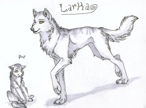 Larka Concept by Tuco