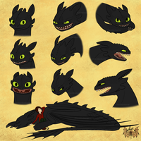 Toothless study by LuxBlack