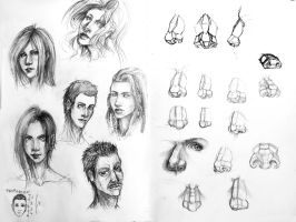 Anathomy - Faces and noses by Estelmistt