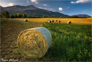 Colors of evenings by Philippe-Albanel