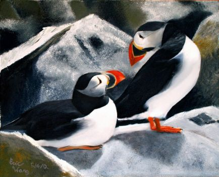 Two Puffins by Rrgrg
