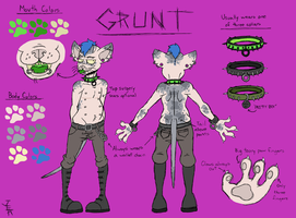 Grunt Ref by flammingcorn