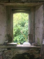 Abandoned House Window by hexhatter359