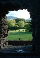 A view from Moor Abbey by pshope