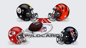 2015 AFC Wild Card by Nivrag69