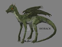 Skyback by Benjee10