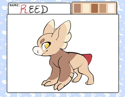 Reed | Wyngling (Approved!) by ryouzo