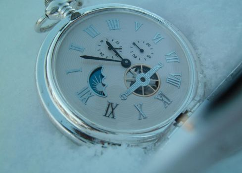 Frozen in Time by Moble