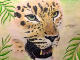 Jaguar-King of the Tropics by LusciousLavender