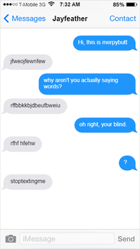 warrior cats texting - page four by x-Recolor-Splash-x