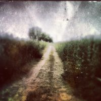 Road to the Past by SevimDalan