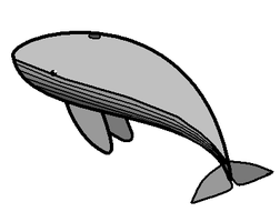 leviathan Whale for the Hillel by Turgo