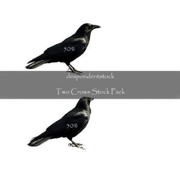 Two Crows Stock Pack by despondentstock