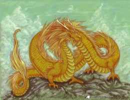 Golden Dragon by luckyraeve