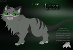 Liza reference sheet 2015 by StriviaX7