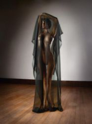 3664 Beautiful Nude Woman Under a Blackl Veil by artonline