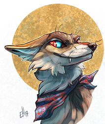 Coyote Moon by Hiccupby
