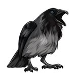 Piebald Raven by TokoTime