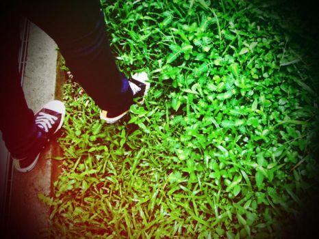 patch of green. by deadnic