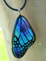 Mixture Fused Glass Wing by FusedElegance