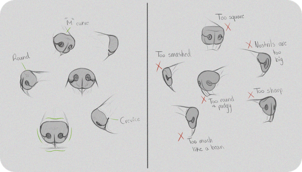 Realistic Canine Nose Tutorial by Anti-Dark-Heart