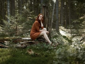 6\6 into the woods by QuartzHDR