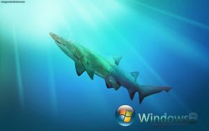 Windows 8 : Shark Edition by CrazyPXT