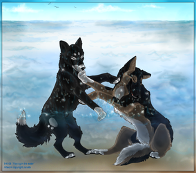 Dogs playing in the water by Janaita