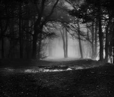 Sadness Forest by Justine1985