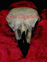 Giant Corvid Skulls by MorganCrone