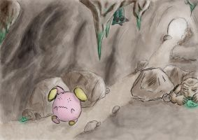 whismur's adventure