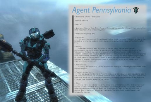 Agent Pennsylvania- Freelancer by Kieranoleary