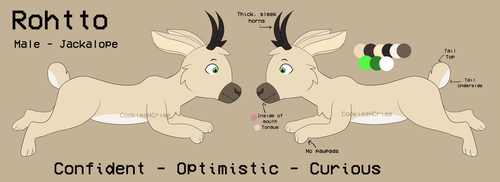 Rohtto - Reference Sheet - May 2018 by CookiesNCrime