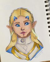 Zelda - Breath of the Wild Portrait by Maiilinn