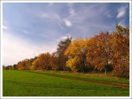 Feel the autumn by mjagiellicz