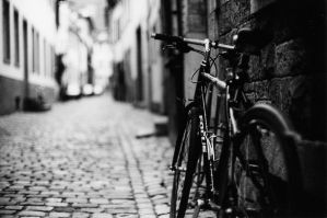 bike on focus by ncavee