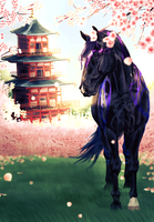 Cherry Blossoms | Com | by TheChotta