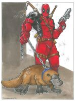 Deadpool and Platypus by DKHindelang