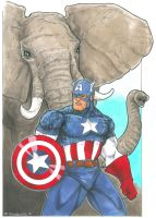 Captain America and Elephant by DKHindelang