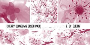 Cherry Blossoms Brush Pack by elexis6