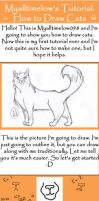 Tutorial: How to Draw Cats by myalltimelow098