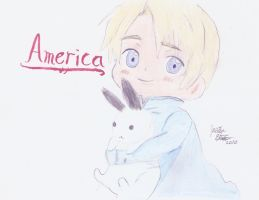 little America by mewberrylol