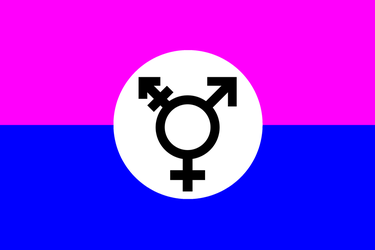 Transsexual Flag by purplemutant