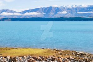 NZ- Lake Pukaki Green Patch by EJSCreations