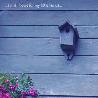 ...a small house... by Lavenderwitch